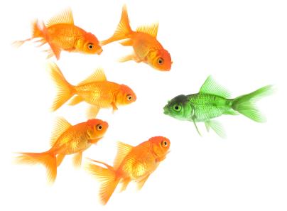 уникални рибки